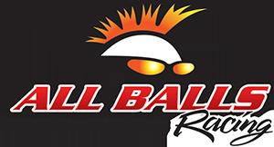 Официальный дистрибьютор ALL BALLS RACING в России